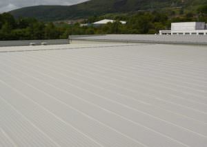 liquid roofing pitched roof repair metal cladding renovation patterson protective coatings