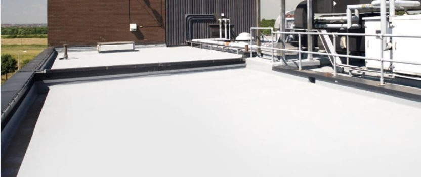 TOR Liquid Waterproofing